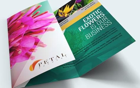 Brochures in Folders