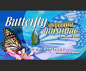 Butterfly Mystique of Miami Inc. - tagged with flower