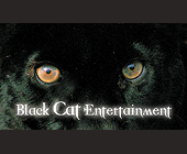 Black Cat Entertainment - Music Industry