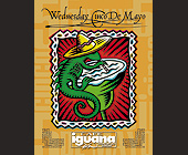 Wednesday Cinco de Mayo at Cafe Iguana Cantina in Miami - tagged with sombrero
