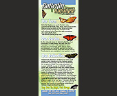 Butterfly Mystique of Miami Inc. - Flyer Printing