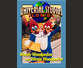 Universal Studios Trading Cards Woody and Winnie Woodpecker - Amusement Park Graphic Designs