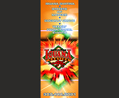 Cafe Iguana Cantina Promo Events - 1275x3300 graphic design