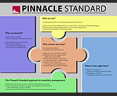 Pinnacle Standard Accounting Business Consulting and Outsourcing Solutions - Finance and Accounting