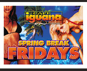 Spring Break Fridays at Cafe Iguana - tagged with live broadcast