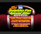 Dolphins Fan Special Offer - created October 2003