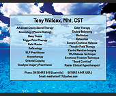 Tony Willcox ST Advanced Cranio Sacral Therapy - tagged with cloudy sky