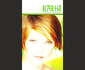 Alter Ego Professional Hair Products - Beauty Graphic Designs
