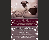 Bark n' Bubbles Dogwash and Boutique  - Austin Graphic Designs