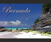 Bermuda Beaches - Travel and Lodging Graphic Designs