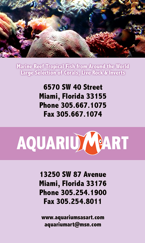 Aquariumart Aquarium Market