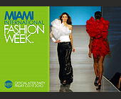 Miami International Fashion Week - Party Graphic Designs